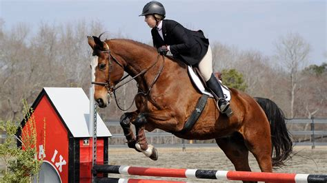 Seeding determined for SEC Equestrian Championship